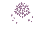 Nevada Palliative Care
